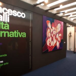 francesco visalli solo exhibition reggio emilia 2011 040