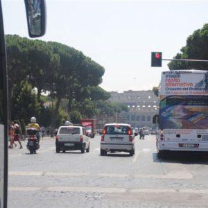 francesco visalli solo exhibition rome 2011 chiostro del bramante 037